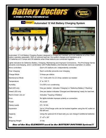 Automated 12 Volt Battery Charging System - WAKWAK