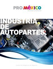 Download PDF - ProMéxico