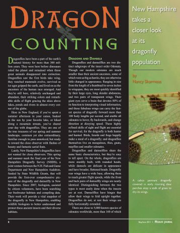 Dragon Counting - New Hampshire Fish and Game Department