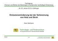 Emissionsminderung bei der Verbrennung von Holz und Stroh