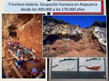 Trinchera Galería. Ocupación humana en Atapuerca ... - Aragosaurus