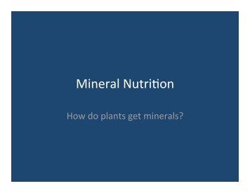 Mineral Nutri on
