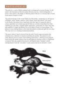 The Polecat - The Vincent Wildlife Trust - Page 2