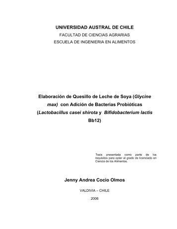 Elaboración de Quesillo de Leche de Soya - CyberTesis UACh ...