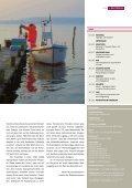 Anlagetrends Rohstoffe - Basinvest - Seite 3