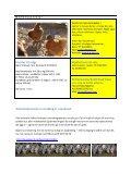 Fagmelding 15 - Haugaland landbruksrådgjeving - Page 2