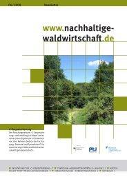 C-Sequestrierung - Nachhaltige Waldwirtschaft
