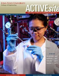 ActiveSite CBE Newsletter – Fall 2008 - Chemical and Biological ...