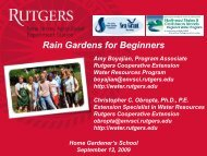 Rain Gardens for Beginners - Rutgers Cooperative Extension Water ...