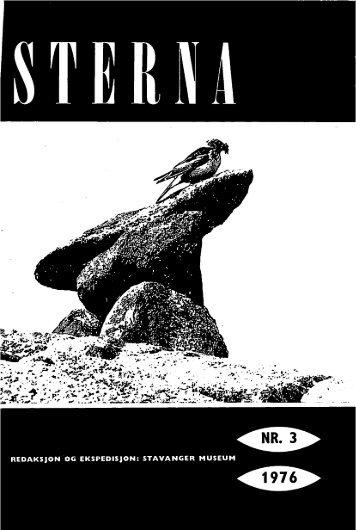 Sterna, bind 15 nr 3 (PDF-fil) - Museum Stavanger