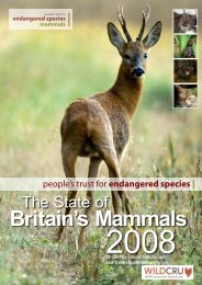 Britain's Mammals - People's Trust for Endangered Species