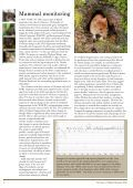 Britain's Mammals - People's Trust for Endangered Species - Page 6