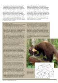 Britain's Mammals - People's Trust for Endangered Species - Page 7