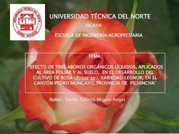 DEFENSA TESIS.pdf - Repositorio UTN