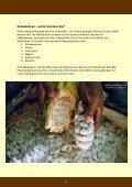 Das Besondere der GEPA-Schokoladen - Fair4You - Seite 3