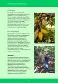 Das Besondere der GEPA-Schokoladen - Fair4You - Seite 4