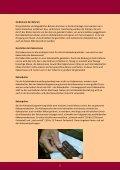 Das Besondere der GEPA-Schokoladen - Fair4You - Seite 7