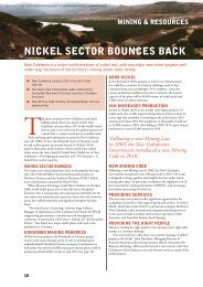 nickel sector bounces back - Business Advantage International