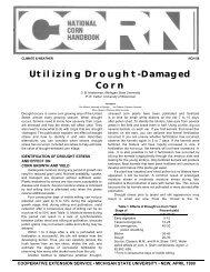 Utilizing Drought-Damaged Corn - Wisconsin Corn Agronomy