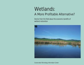 Wetlands: A More Profitable Alternative? - Conservation Technology ...