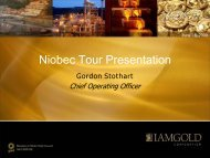 View this Presentation (PDF 1.81 MB) - Iamgold