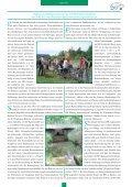 Download dieser Ausgabe - VSVI MV - Seite 7