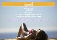 jul 2011 - Wayout