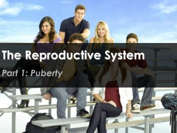 The Reproductive System - Science with Mr. Enns