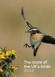 state-of-the-uks-birds_tcm9-383971