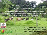 milk production perspectives in Brazilian Amazon Region ... - LiFLoD