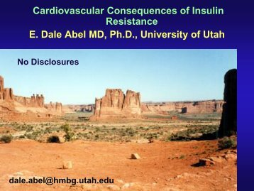 Cardiovascular Consequences of Insulin Resistance
