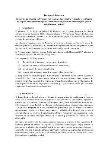 Términos de Referencia Diagnóstico de situación en ... - Uruguay XXI