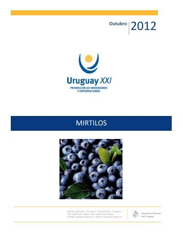 MIRTILOS - Uruguay XXI