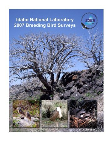 Download full 2007 Breeding Bird Survey report - GSS ESER Program
