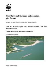 Schiffahrt auf Europas Lebensader, der Donau