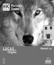 manuale pdf