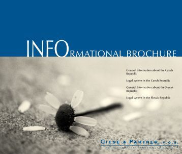INFORMATIONAL BROCHURE - giese & partner