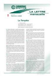 Lettre mensuelle Novembre 2008 - Haussmann Patrimoine