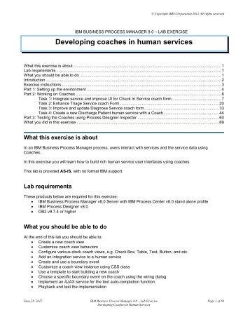 IBM BUSINESS PROCESS MANAGER 8.0 – LAB ... - User Portal