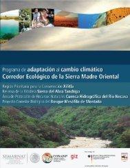 Programa de Adaptación al Cambio Climático en el Corredor ...
