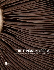 THE FUNGAL KINGDOM - Duke University Department of Molecular ...