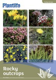 Rocky outcrops - Plantlife