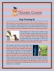 Dog Training Nj