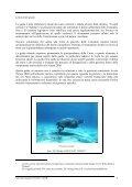 Linee guida per listituzione della rete Natura 2000 - Comunità ... - Page 7
