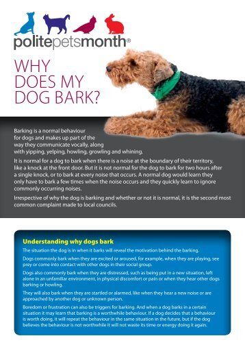 Why does my dog bark? - Australian Veterinary Association