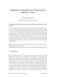 Infiniteness of Double Coset Collections in Algebraic Groups