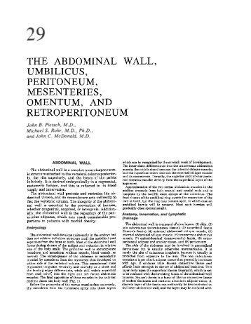 abdominal wall, umbilicus, peritoneum, mesenteries, omentum