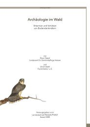 Archäologie im Wald - Landesbetrieb Hessen-Forst