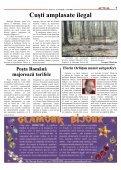 Berceanu, Videanu şi Blaga, toţi la Sibiu - Sibiu 100 - Page 7