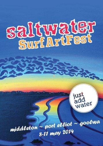 saltwater program for web